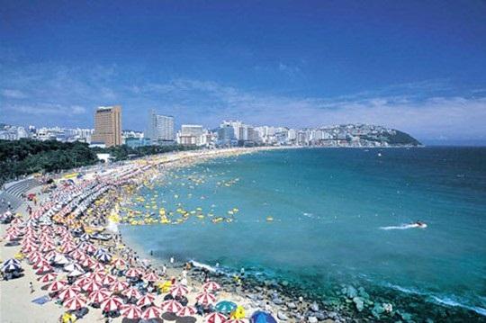 Quang cảnh bờ biển Busan gần Đại học Pukyong